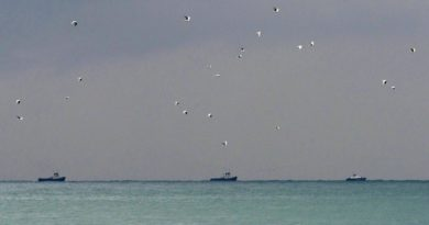 epa05687785 Rescue boats search for the wreckage of a crashed Russian Tu-154 plane, belonging to the Russian Defense Ministry near the coastline of Sochi, Russia, 25 December 2016. According to media reports, a Tupolev-154 Russian airplane carrying 92 people disappeared from radar and crashed into the Black Sea after taking off from an airport in the Russian resort town of Sochi on 25 December. The plane was reportedly carrying eight crew members, nine Russian TV journalists as well as members of the Russian Red Army Choir, also known as the Alexandrov Ensemble, who were to perform for Russian troops stationed in Syria.  EPA/YEVGENY REUTOV