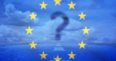 Metaphoric insights into European Union future.
