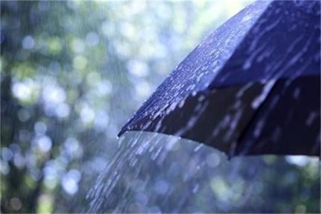 дъждовно