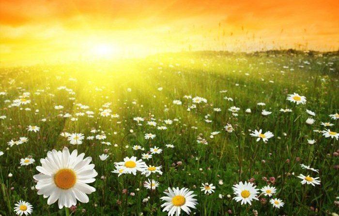 Днес ще бъде предимно слънчево с максимални температури между 20° и 25°