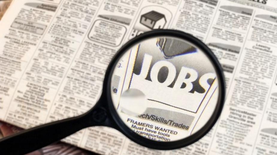 работа, безработица
