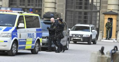шведска полиция