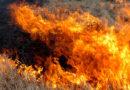 Пожари бушуват в Сакар планина, помага 60-тонен булдозер