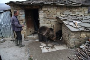 Albania, Skrapar region | 2016 12 15 | Rescue and transfer of brown bear Riku from the Skrapar region to a transition enlcosure at Tirana Zoo. Riku had been kept as a pet by his previous owner. FOUR PAWS is looking for an appropriate place for him to live permanently. Here: bear Riku and his former owner.