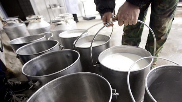 мляко, фермери