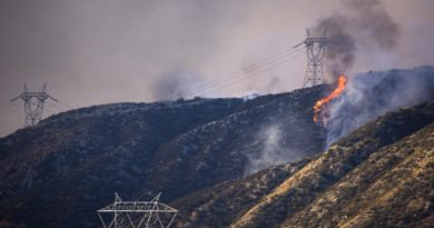 epaselect epa05491780 Flames burn near high power lines as a wildfire sweeps through Cajon Junction, California, USA, 16 August 2016. According to reports, the fast-moving Blue Cut Fire, which consumed so far some 6,500 acres with a zero percent containment, prompted the mandatory evacuation of the whole community of Wrightwood.  EPA/EUGENE GARCIA