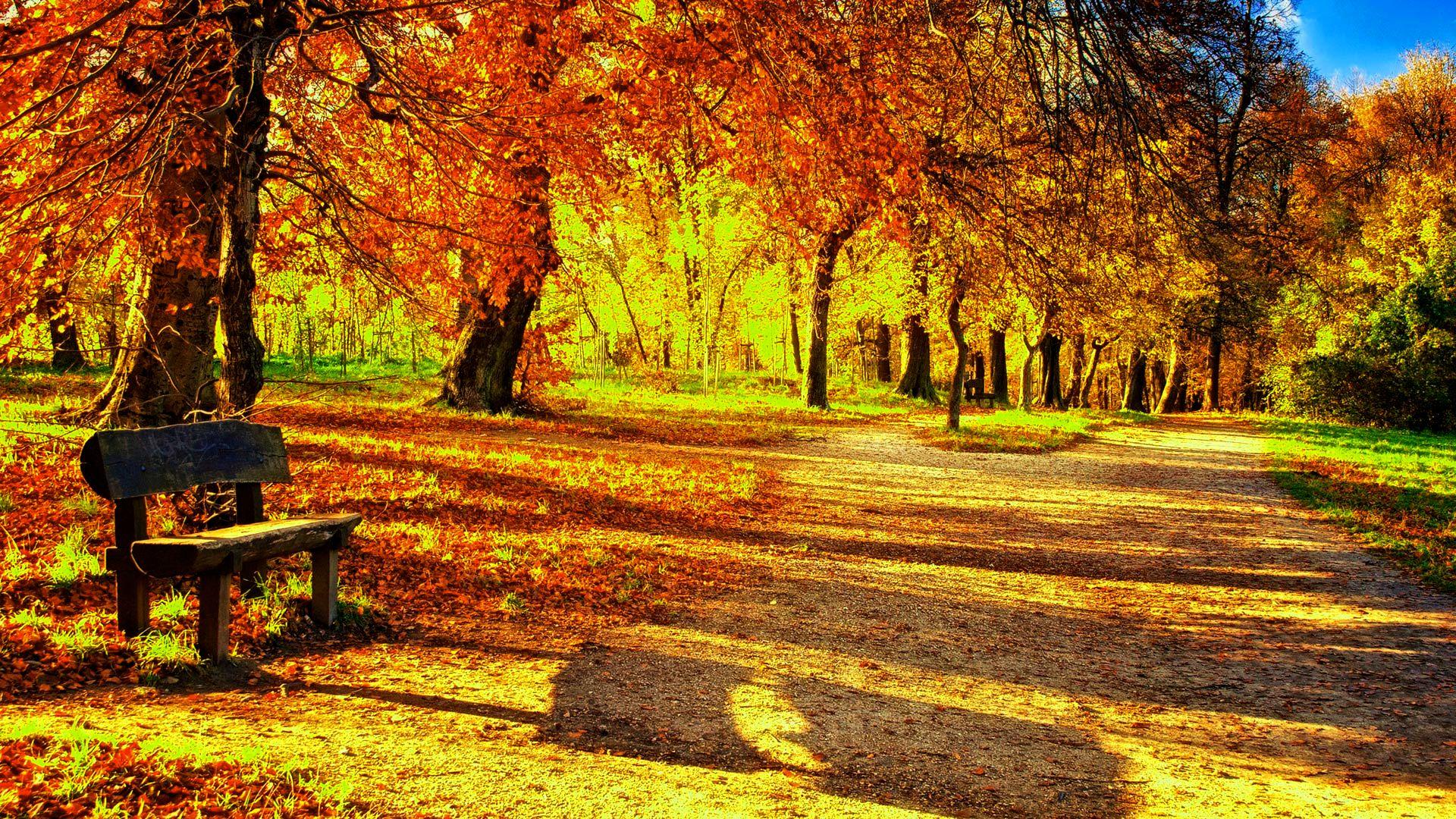 есен, хладно