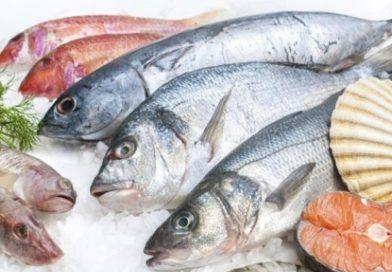 БАБХ започва проверки на обектите, предлагащи риба за Никулден