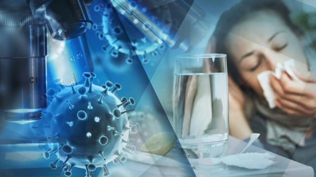 грип вирус